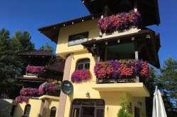 Zlatibor nekretnine - Luksuzna vila Akademik,na prodaju,250m od Centra