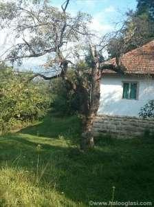 Novi Pazar nekretnine - Prodajem seosko domaćinstvo sa šumom