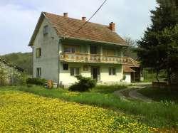 Aleksinac недвижимости - Kuća sa imanjem ( 3ha )