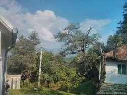 Novi Pazar real-estate - Prodajem seosko domaćinstvo sa šumom