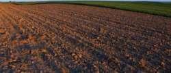 Zrenjanin gayrimenkul - Poljoprivredno zemljiste, Perlez, 7.25 lanaca
